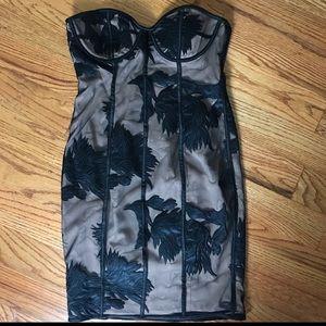 Bardot Black Lace Tube Dress